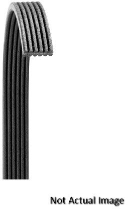 Dayco 5061380 Poly Rib Serpentine Belt
