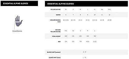 Salewa Herren Steel Vf 2 DST Gloves Handschuhe