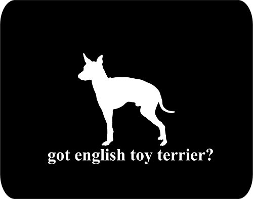 got english toy terrier? Dog Lovers - Rectangle Non-Slip Rubber - Black Thick Mouse Pad - 8