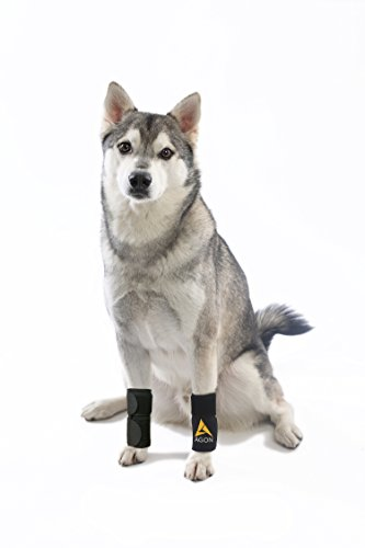 (Pair) Agon Dog Canine Front Leg Brace Paw Compression Wraps with Protects Wounds Brace Heals and Prevents Injuries and Sprains Helps with Loss of Stability Caused by Arthritis (Small/Medium)