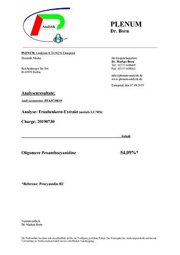 Traubenkernextrakt OPC Pulver - 250g