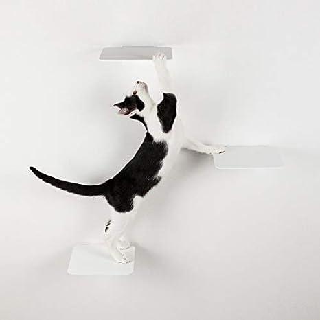 LucyBalu Escalera para gatos Steps Juego de 3 piezas I Pared de escalada individual para gatos de hasta 10 kg I Escalones de escalada con 18 x 18 cm ...