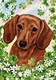 "Dachshund Red by Tamara Burnett St. Patricks Day Garden Dog Breed Flag 12"" x 17″ For Sale"