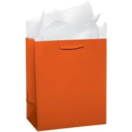Amscan Party Friendly Medium Glossy Gift Bag, Orange Peel, 9 1/2