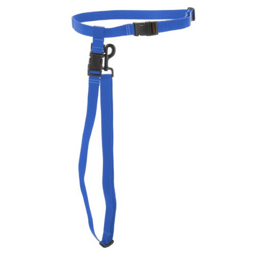Max & Zoey 3 4-Inch Wide Hands-Free Dog Leash, Large, Royal bluee