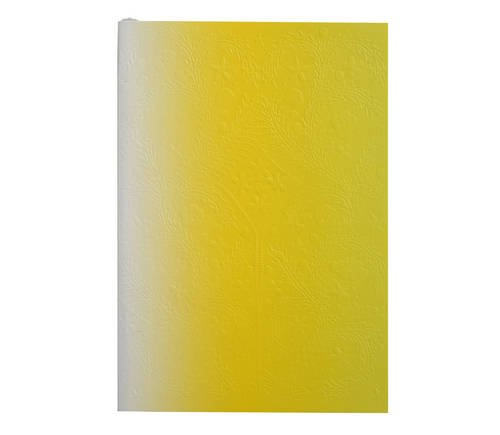 neon-yellow-b5-ombre-paseo-notebook