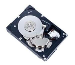 MicroStorage MBA3147RC-MS/HP 247GB SAS - Disco duro (SAS, Servidor/estación de trabajo, HP/Compaq Workstation XW4300, XW4400, XW4600, XW6200, XW6400, XW8400, XW8600, Z400, Z600, Z800)