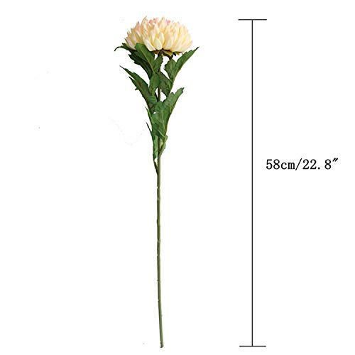Artificial Bellis Perennis Flowers Stems Chrysanthemum Flowers Rose Dahlia Silk Daisy Flower Heads DIY Craft Home Office Decor Champagne