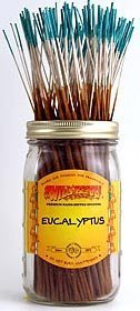 Eucalyptus - 100 Wildberry Incense - Incense Eucalyptus