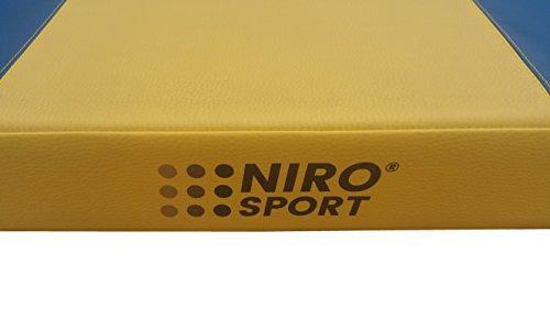 Klettergerüst Niro Sport : Nirosport turnmatte 150 x 100 8 cm gymnastikmatte fitnessmatte