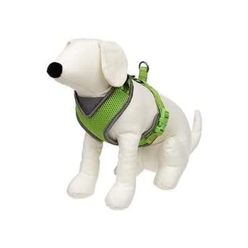 Amazon Petco Adjustable Mesh Harness For Dogs In Green Gray