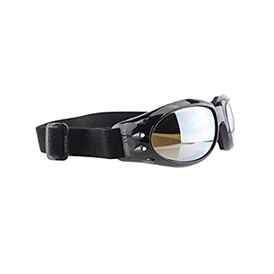 TITUS Sport & Safety Multi-Use Goggles