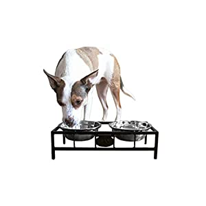 ASPCA Elevated Double Diner Pet Feeding Station with 2 Bowls, Holds up to 20 oz 2