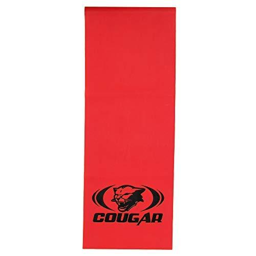Cougar Resistance Loop Bands, Resistance Exercise Bands for Home Fitness Workout.  Light
