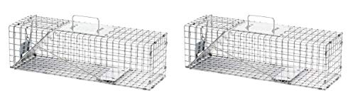 Havahart Medium Professional Style One-Door Animal Trap for Rabbit, Skunk, Mink, and Squirrel - 1078 (Pack of 2) ()
