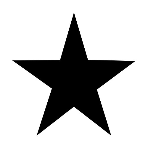 Wild Dingos LLC Army Star 10