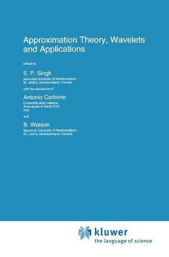 Approximation Theory, Wavelets and Applications (Nato Science Series C:) by Singh S P