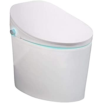 Foheel Smart One Piece Toilet With Heated Seat Lcd Display