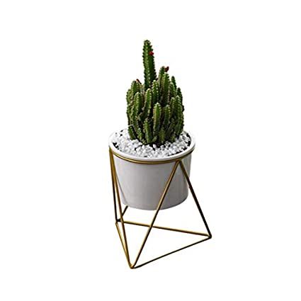 . Amazon com   Takefuns Planter Pots Indoor Modern Plants and Planters