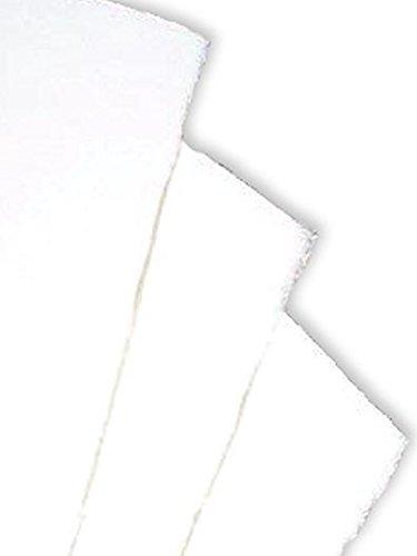 (Fabriano Artistico Watercolor Paper (Traditional White) - 90 Lb. Hot Press 2 pcs sku# 1838109MA)