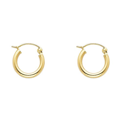2mm Thickness 14k Yellow Gold Hinged Hoop Earrings (13 x 13 mm) ()