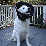 The Comfy Cone Extra Large for necks 21 to 25 inches, My Pet Supplies