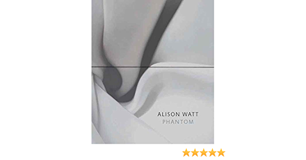 Alison Watt: Phantom National Gallery London Publications ...