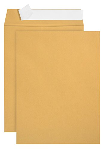 100 9 X 12 SELF SEAL Golden Brown Kraft Catalog Envelopes- Designed for Secure Mailing- Oversize Strong Peel and Seal Flap with 28 LB Kraft Paper- 100 Envelopes free shipping