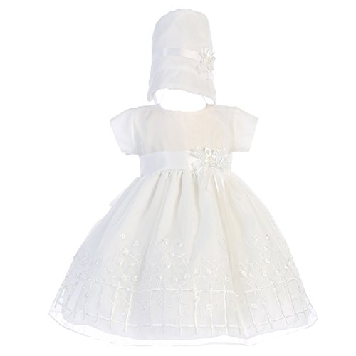 Embroidered Organza Christening Baptism Dress (3-6 mo)
