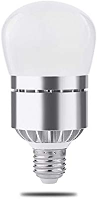 Dusk to dawn light bulb photo sensor light bulb with auto onoff dusk to dawn light bulb photo sensor light bulb with auto onoff indoor outdoor lighting lamp for porch hallway patio garage 12 warm white 1 pack aloadofball Gallery