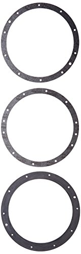 Pentair 79200700 10-Hole Standard Gasket Set with Double Wall Replacement Large Stainless Steel Niches
