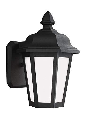 Brentwood Collection Twelve Light - Sea Gull Lighting 89822EN3-12 Small One Light Outdoor Wall Lantern Black