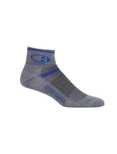 Icebreaker Merino Men's Multisport Ultra Light Mini Socks, Twister Heather/Cobalt, Large