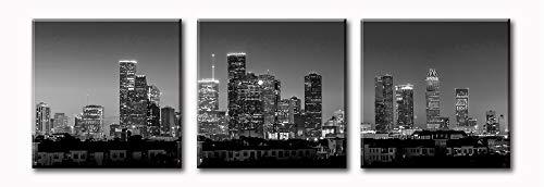 Houston Skyline Wall Art - Black and White Cityscape Panoramic Texas Texans -