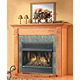 Vent Free Gas Fireplace Fuel Type: Natural Gas