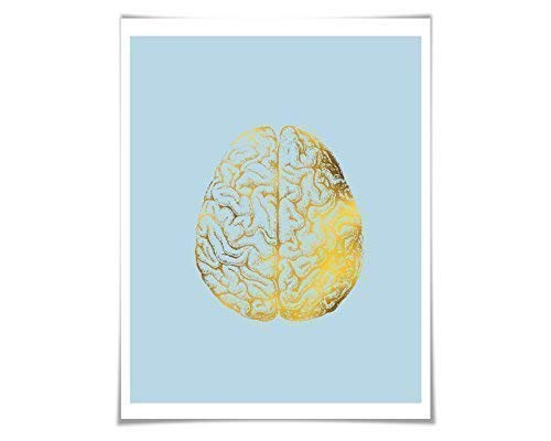 Amazon Human Brain Anatomical Gold Foil Art Print 36