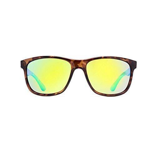 Calcutta Catalina Sunglasses (Tortoise Frame w/ Green Mirror Lenses - Gold Discount Coast Sunglasses