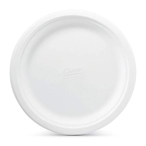 Bestselling Disposable Plates