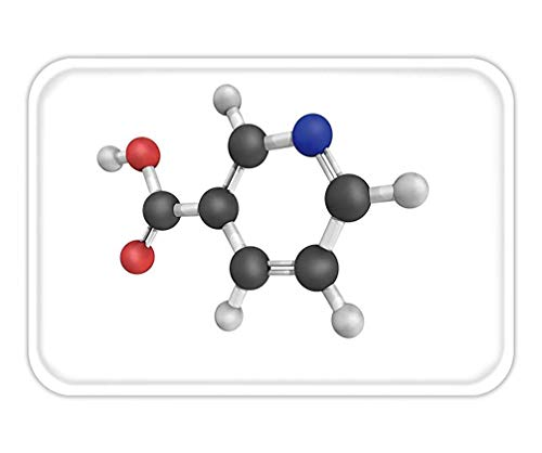 Friedman Doormat nicotinic Acid Used to Treat high Cholesterol and niacin Deficiency Also Known as Vitamin b and
