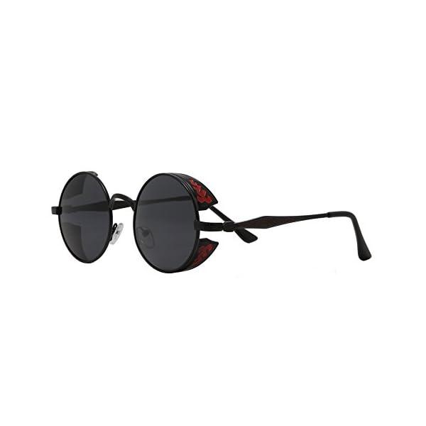 Polarized Round Retro Sunglasses Gothic Steampunk Sunglasses For Men And Women 5