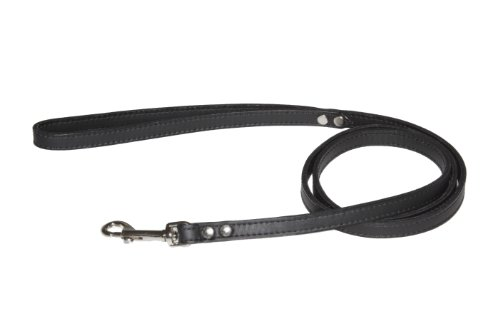 Lead Pet Leash, 1/2-Inch by 4-Feet, Non Metallic Black, My Pet Supplies