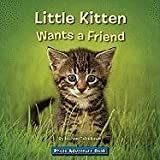 Photo Adventure-Little Kitten Wants a Friend, Michael Teitelbaum, 1601152906
