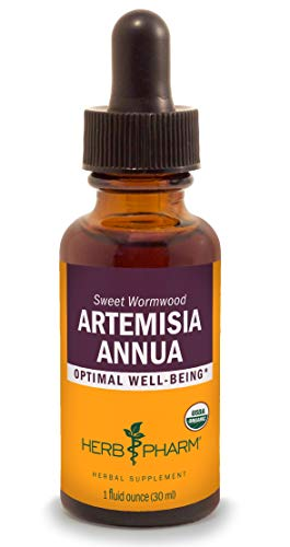 Herb Pharm Certified Organic Artemisia Annua (Sweet Annie) Liquid Extract - 1 Ounce
