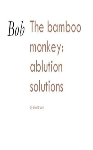 Bob The Bamboo Monkey: Ablution Solutions (Bob the Bamboo Monkey )