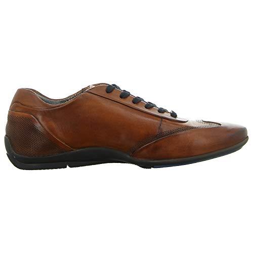 cognac Basses Sneakers 21248e Daniel 11 6300 8 Homme Hechter Marron CvwXq16RX