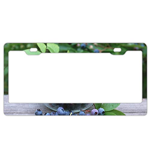 ss Bilberry Crop Chrome License Plate Frame Funny Novelty License Plate Cover Holder ()