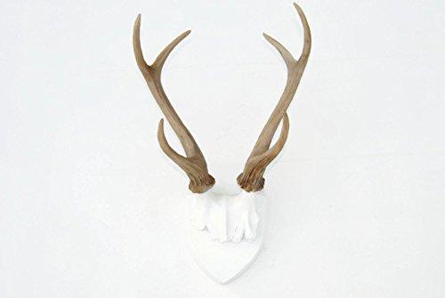 Antler Wall Plaque - Near & Deer Faux Deer Antler Mounting Plaque, Deer Antlers Wall Hanging, Urban Cowboy Rustic, White with Natural Colored Gradient Antlers