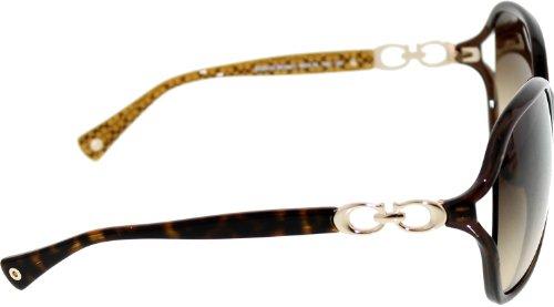 Coach Sunglasses - Natasha / Frame: Brown Lens: Brown Gradient