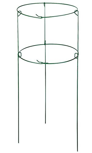 Gardman Double Plant Support Rings, 16'' dia., Pack of 10 by BestNest