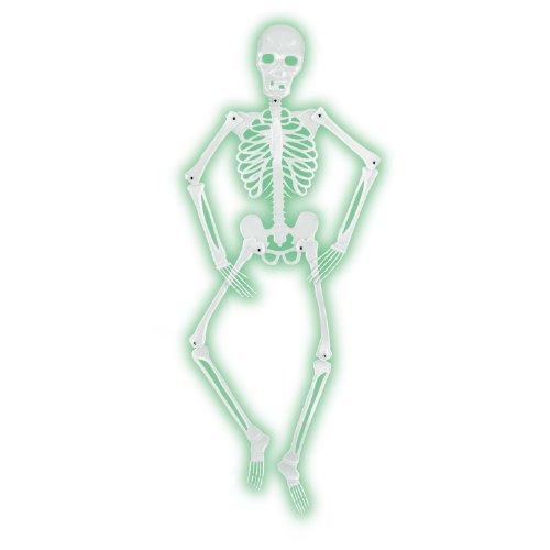 Mr Bones-A-Glo Skeleton Party Accessory (1 count) (1/Pkg)